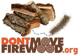 Do Not Move Firewood From One State to Another; Protect Our Environment